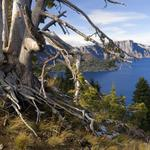 Crater Lake and Wizard Island on Mt. Mazama, just miles off Oregon Route 62 (BH 218).